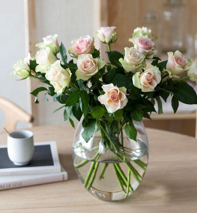 15 rosa roser