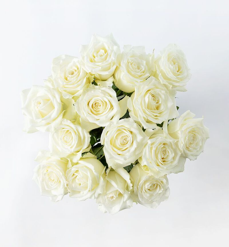 15 hvite roser image number null