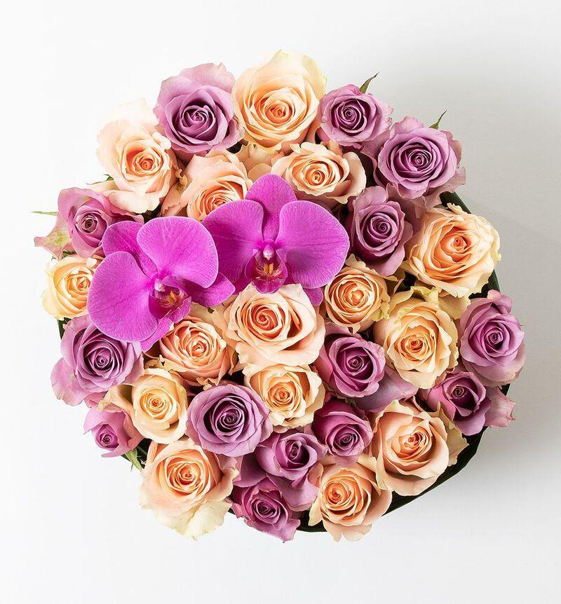 Rosedekorasjon i fersken og lilla image number null