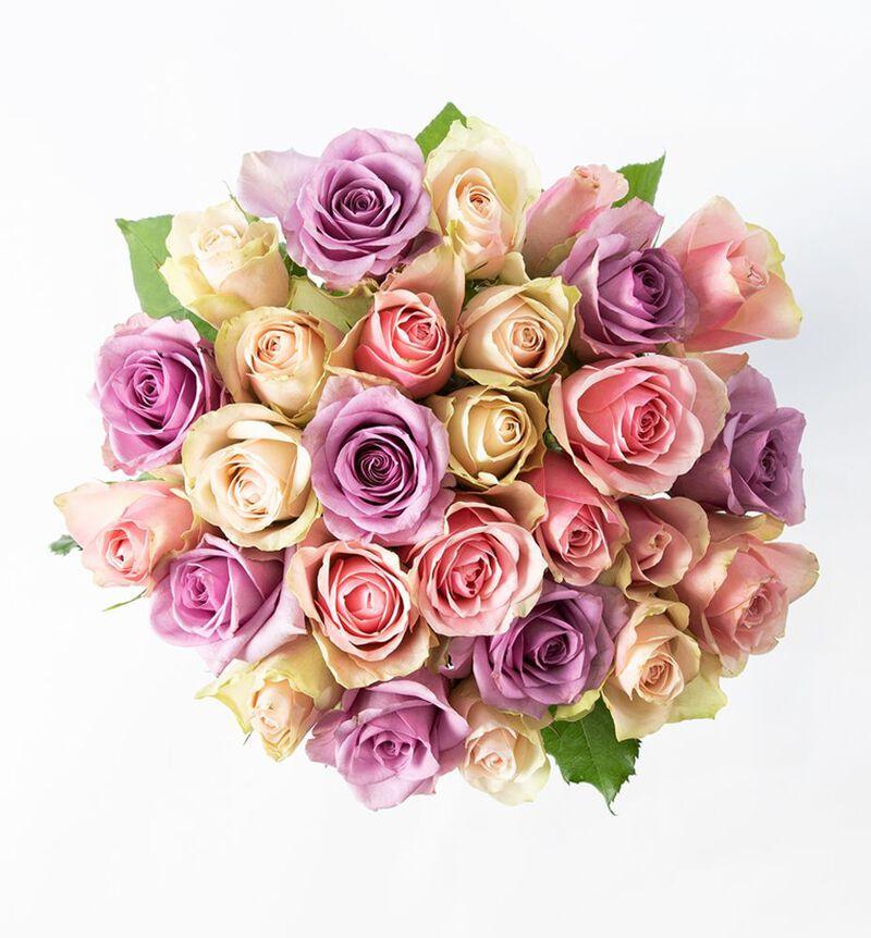 30 Fairtrade roser i rosa og lilla image number null