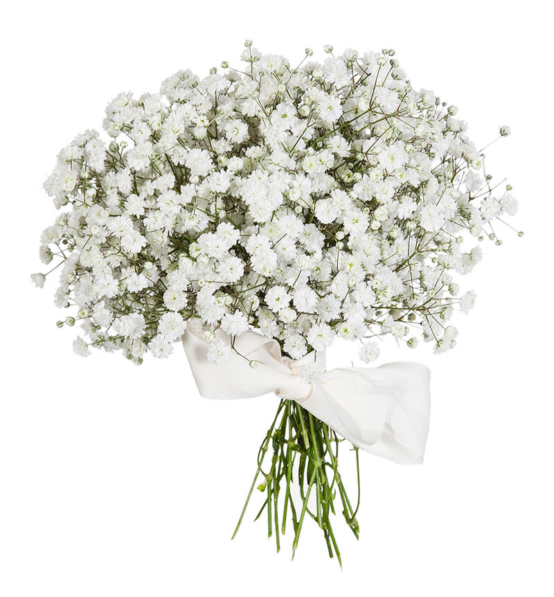 Romantisk brudepikebukett med slør image number null
