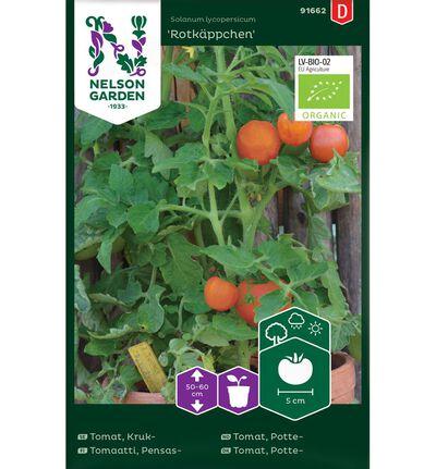 Frø tomat potte