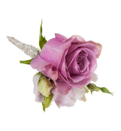 Knapphullsblomst med lilla rose