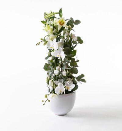 Hvit høy dekorasjon med orkidéer