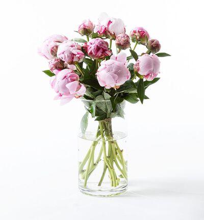 Rosa peonbukett L