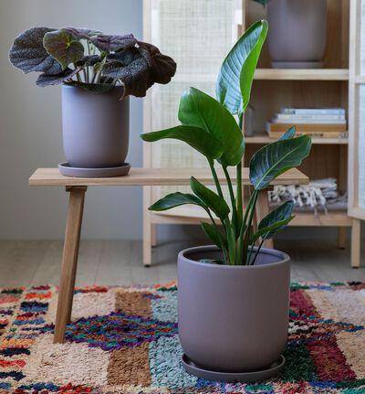Cashmere blomsterpotte brun M
