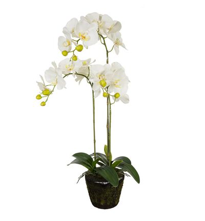Kunstig hvit orkide