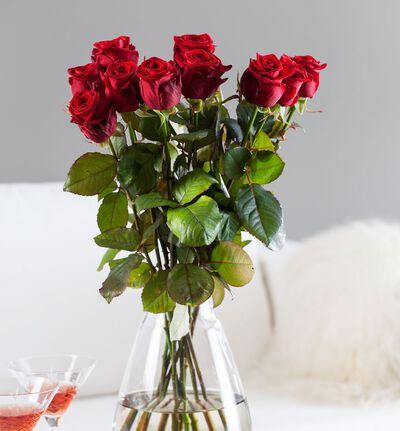 12 langstilkede røde roser