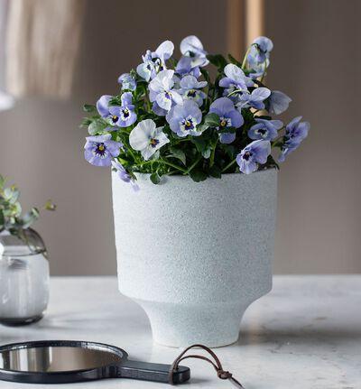 Strå blomsterpotte blågrå M