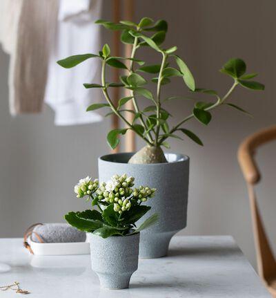 Strå blomsterpotte blågrå XS
