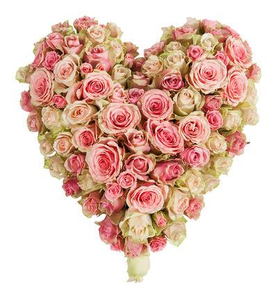 Fylt hjerte med rosa roser S