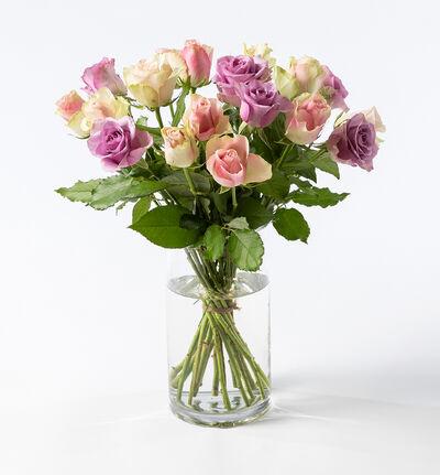 15 Fairtrade roser i rosa og lilla