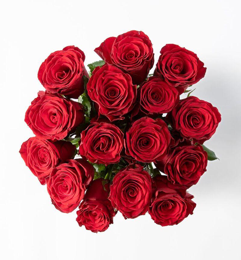 15 røde roser bildenummer 2