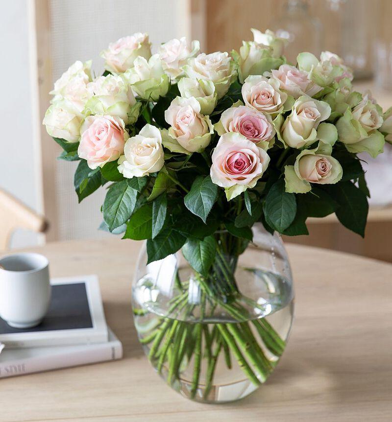 30 rosa roser bildenummer 3