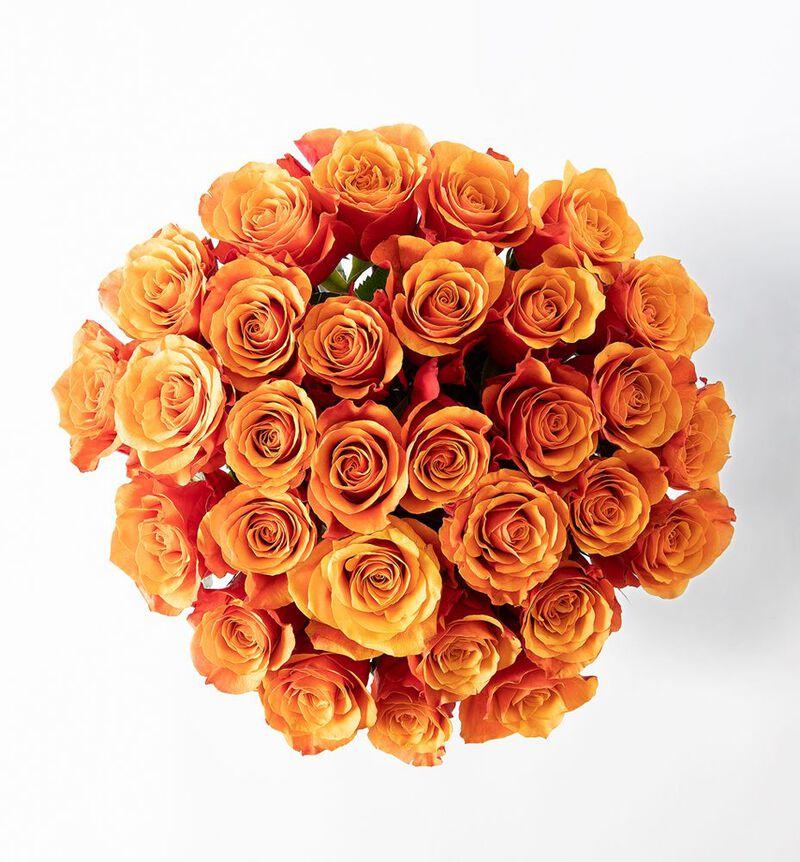 30 gylne roser bildenummer 2