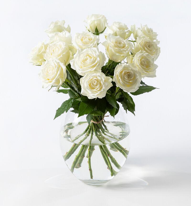 15 hvite roser bildenummer 1