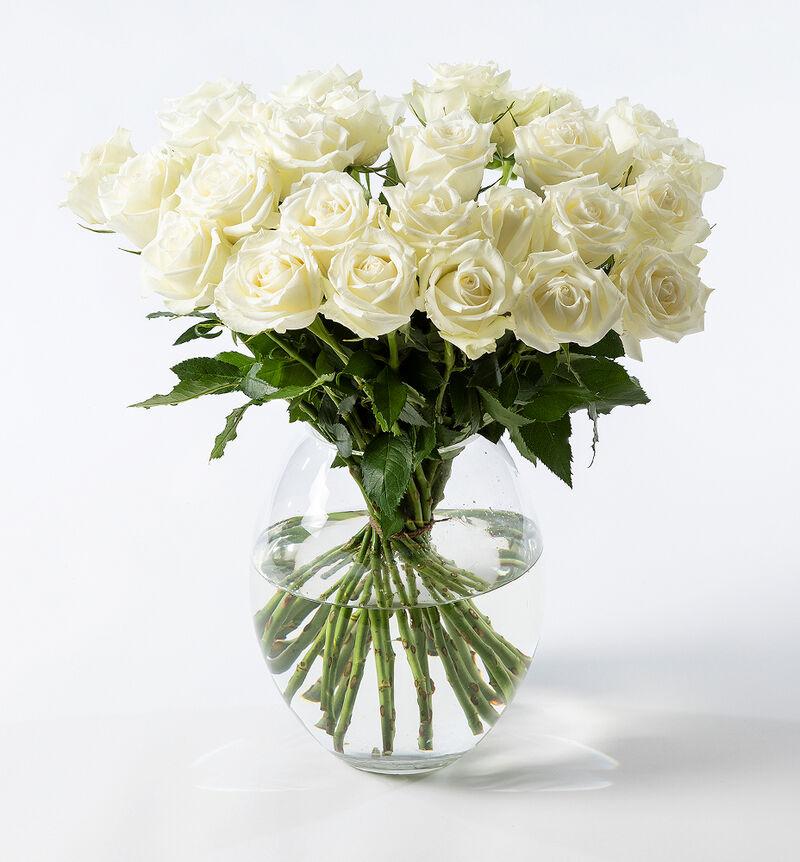 30 hvite roser bildenummer 1