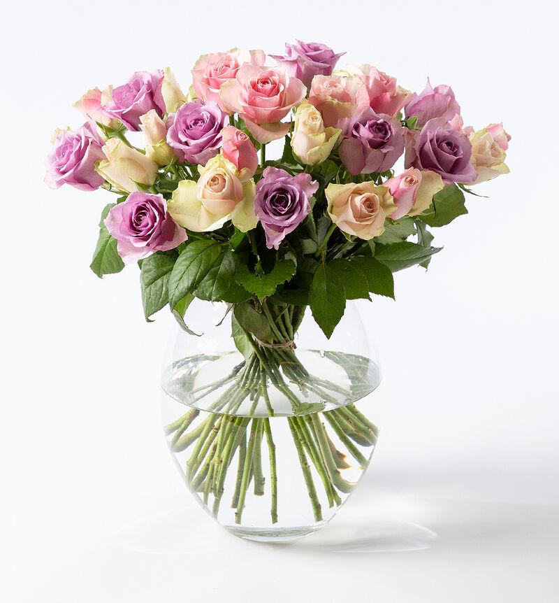 30 Fairtrade roser i rosa og lilla bildenummer 1
