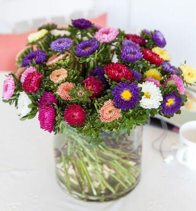 Sommerasters i gavepose 20pk bl.farger