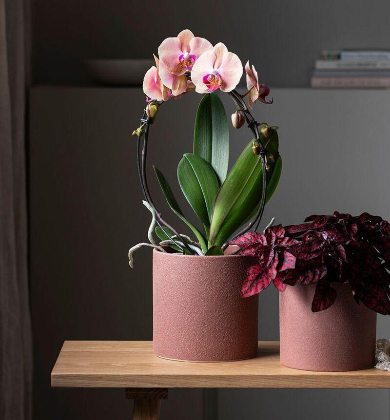 Strå blomsterpotte rustrød M bildenummer 2
