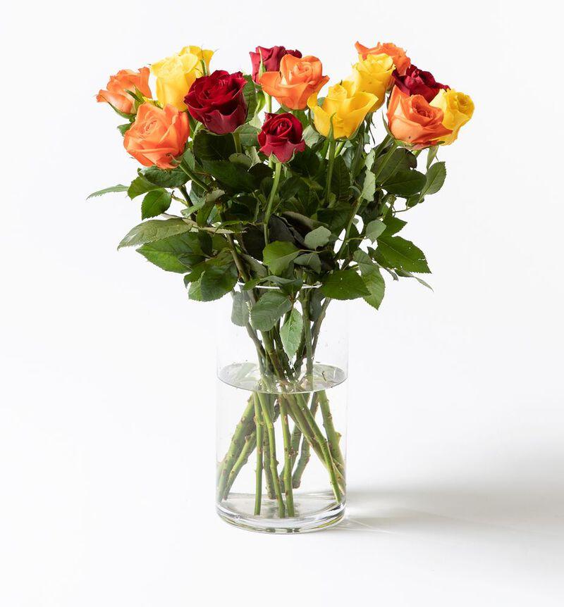 15 Fairtrade Rosa sløyfe roser varme farger bildenummer 1
