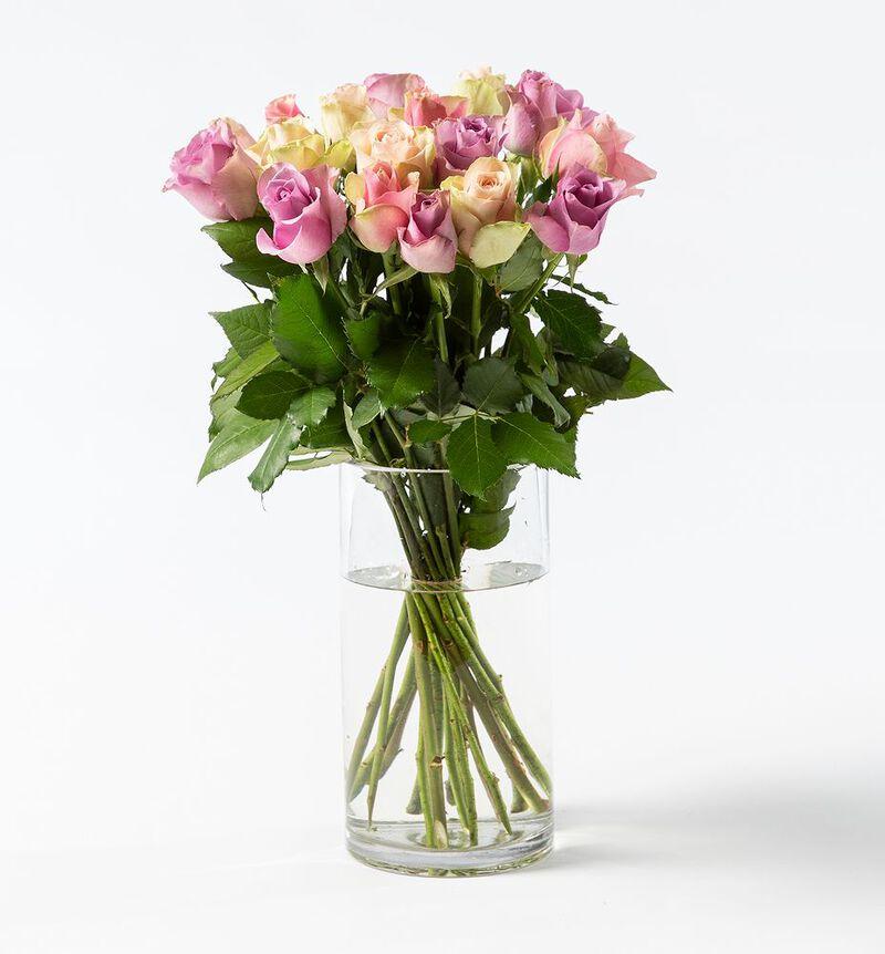 15 Fairtrade Rosa sløyfe roser lilla/rosa bildenummer 1