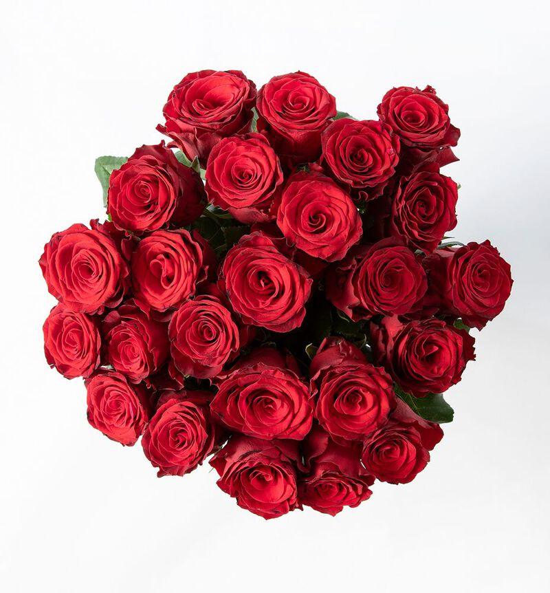 24 langstilkede røde roser bildenummer 2