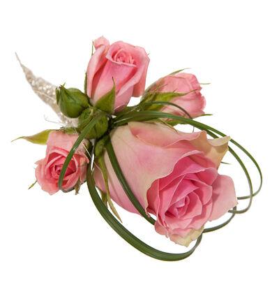 Rosa knapphullsblomst med roser
