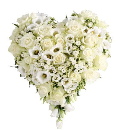 Fylt hjerte i hvitt S