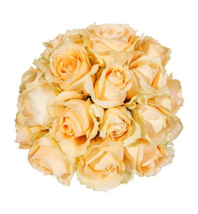 Fersken rosekule