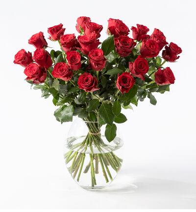 24 langstilkede røde roser