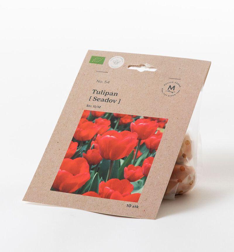 Tulipan seadov høstløk bildenummer 1