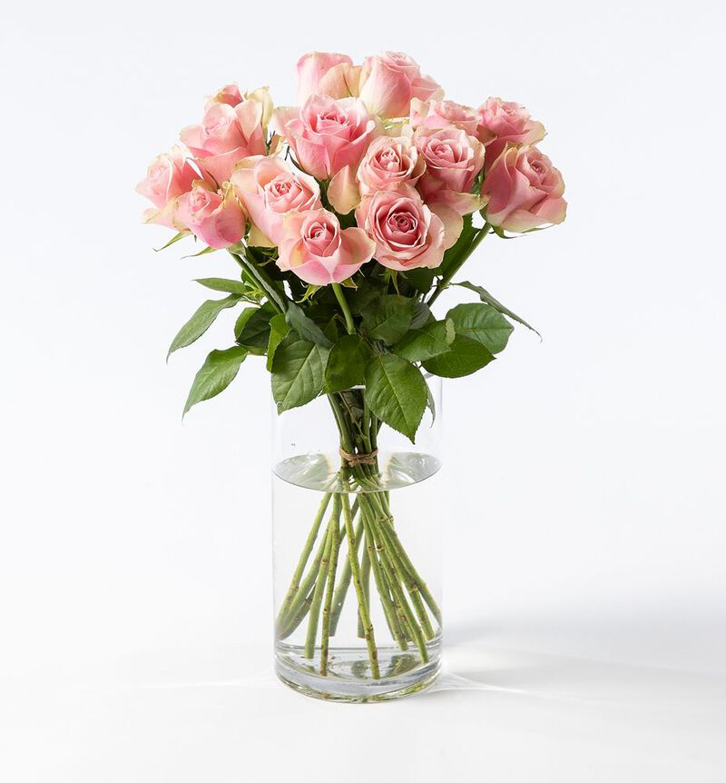 Rosa roser i gavepose med bobler og sjokolade bildenummer 3