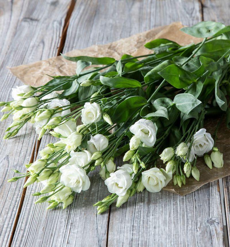 Hvit lisianthus bildenummer 1